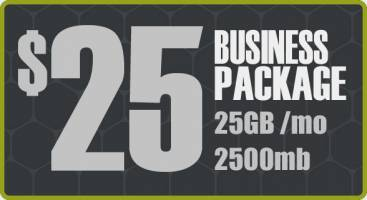 More info about Web Hosting - Business Package