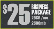 Managed Share Hosting - Business Package